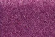 449 Violetto