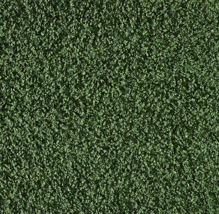 221 Grass