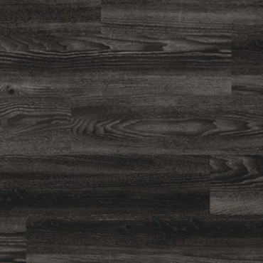 4035 Black Elm