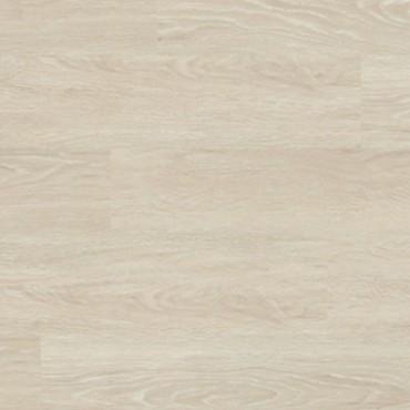 4037 White Oak
