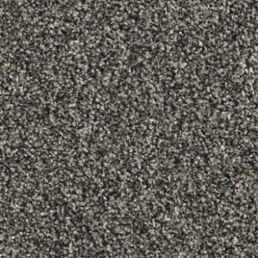 2592 Grey Flor