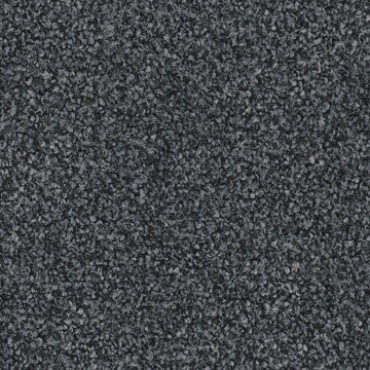 2597 Grey Zone