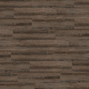 2737 Rusty Pine